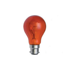 ILM-40W-B22-COLOURED-GLS-1-RED-01_ilm.40w-b22-coloured-gls---red